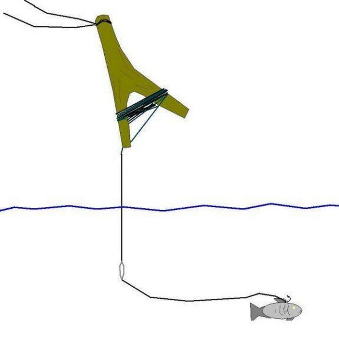 Жерлица летняя рогатка