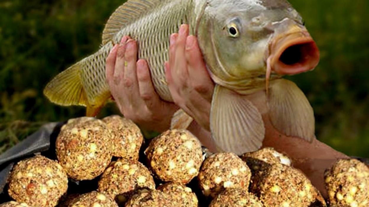 прикормка для большой рыбы