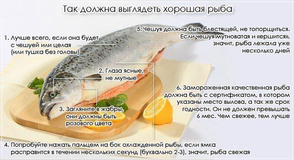Красная рыба- как выбирать и как готовить