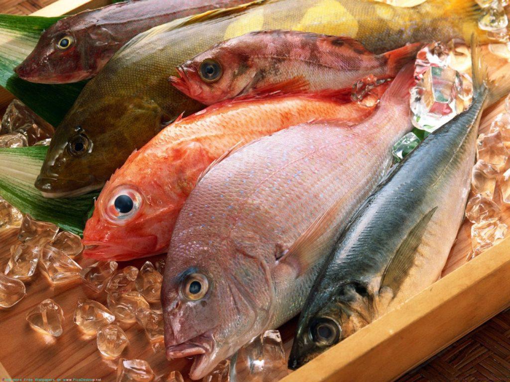 боли у рыб
