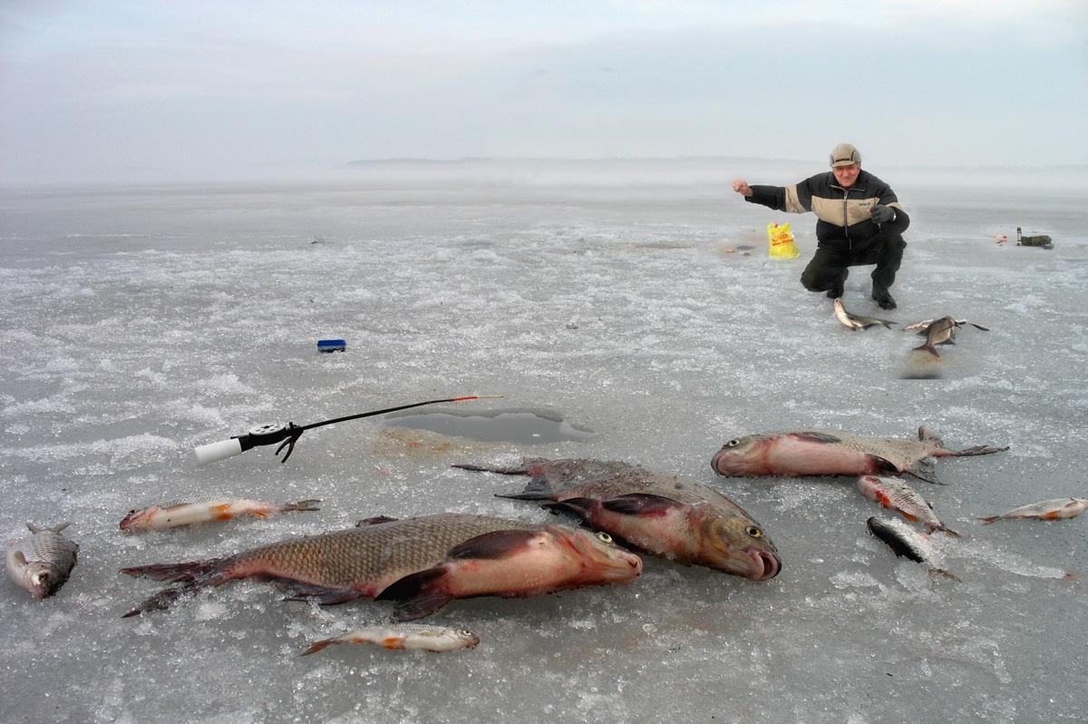 рецепты прикормки для рыбалки своими руками