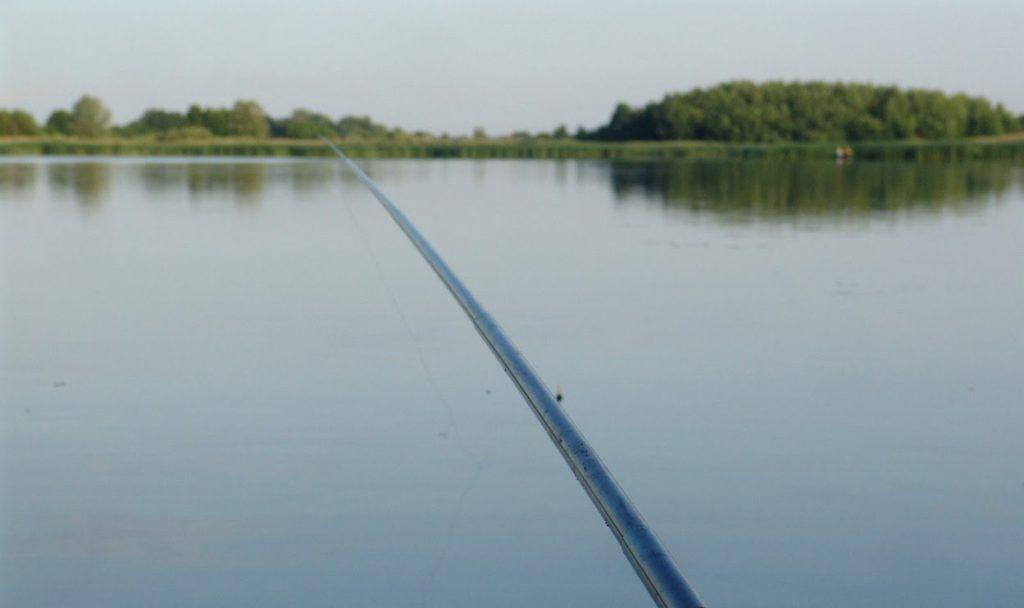 Как правильно настроить снасть для ловли линя