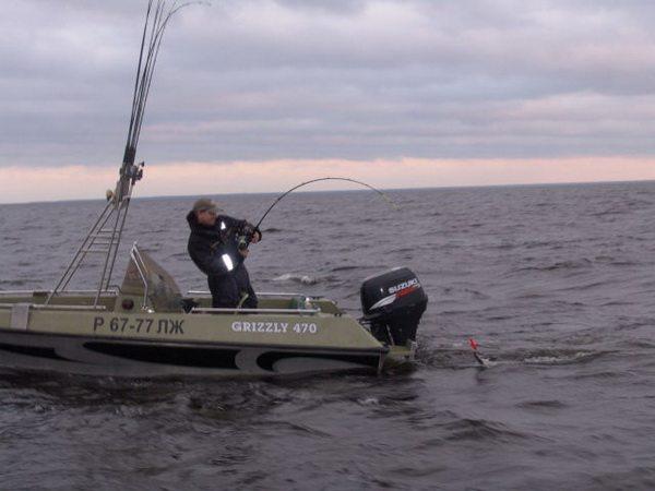 троллинг жереха с лодки