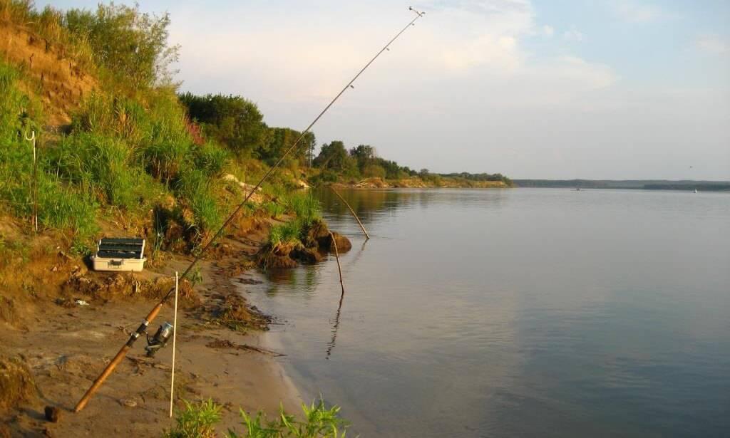 Речная рыбалка в России