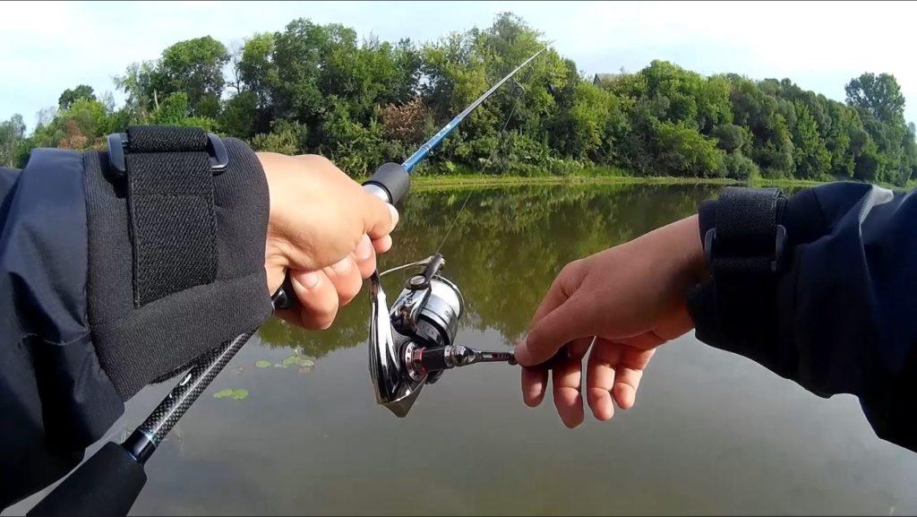 Рыбалка в условиях города