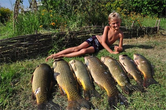 летняя рыбалка миниатюра