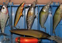 приманки для рыбы миниатюра