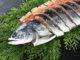 Экспорт норвежского лосося 16.10.17-22.10.17