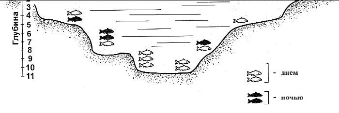Выбор места ловли леща на водохранилище