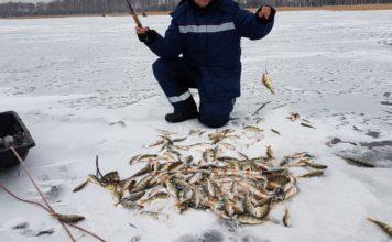Отчет о рыбалке: 15 ноября 2017, Большой Куяш, озеро