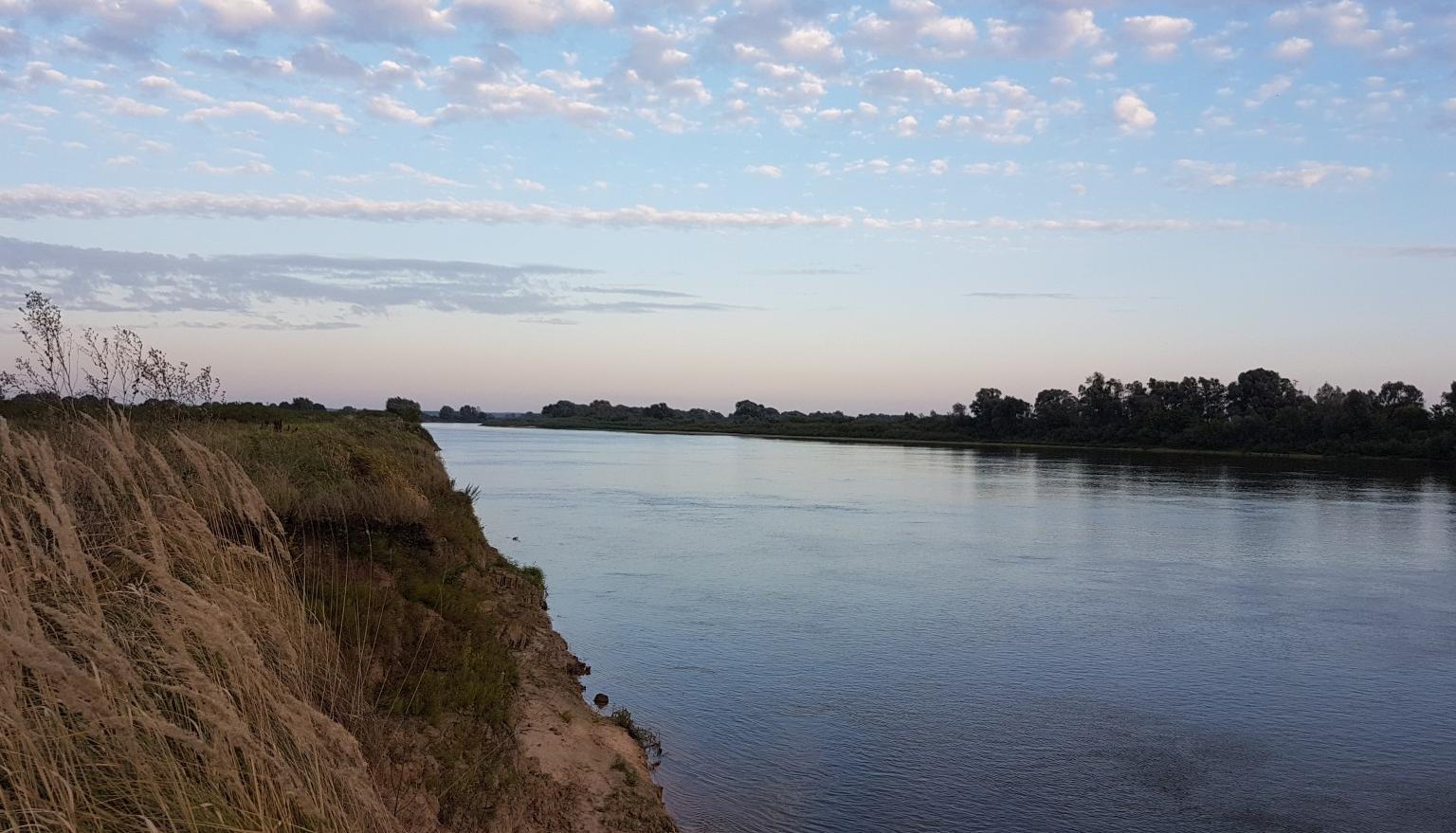 Рыбалка река ока рязанская область