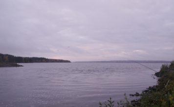 Отчет о рыбалке: 01 октября 2016 — 02 октября 2016, Белоярское водохранилище