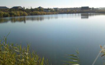 Отчет о рыбалке: Сельский прудик МГО 07 октября 2017