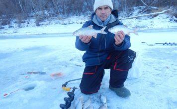 Отчет о рыбалке:  Барнаулка река  24 ноября 2017