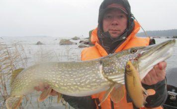 Отчет о рыбалке: Финский залив 03 ноября 2017