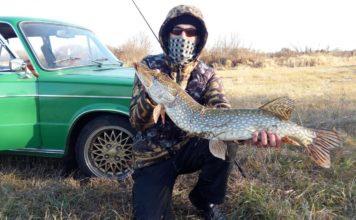 Отчет о рыбалке: река Исеть 17 октября 2017