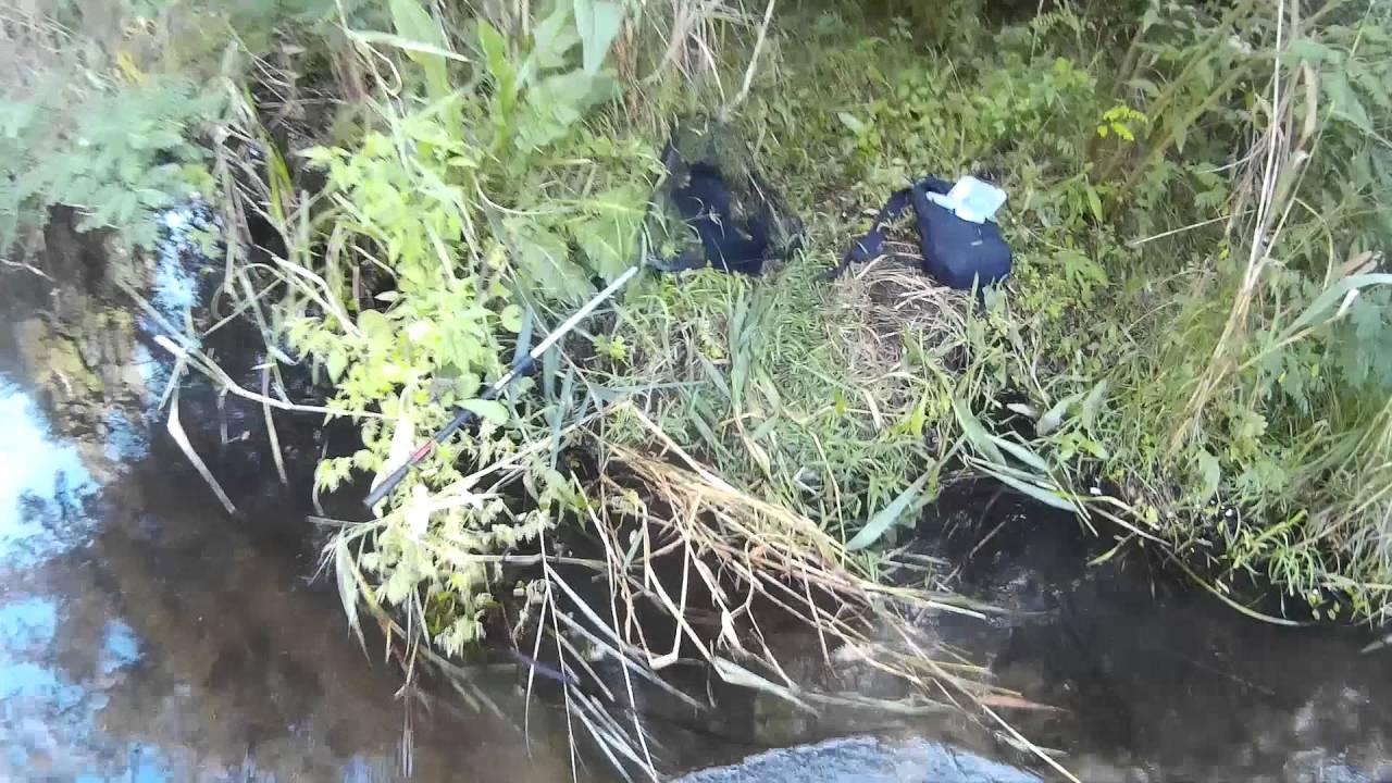 рыбалка видео 2016 2017 весна прикормки