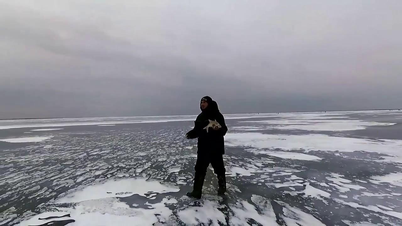 прогноз клева рыбы в ростовской
