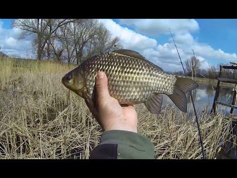 рыбалка весной бахтемир