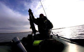 Отчет о рыбалке: Волга (Саратовская область)