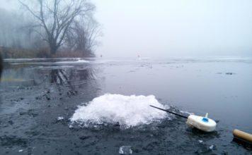 Отчет о рыбалке: Местный деревенский пруд (Пензенская обл)
