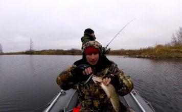 Отчет о рыбалке: Волга (Саратовская область) 10 ноября 2017