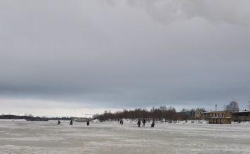 Отчет о рыбалке: Волга (Костромская область)