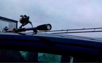 Отчет о рыбалке: Волга (Бармино)