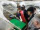 В Калужской области открылся самый большой в России разведение королевской креветки