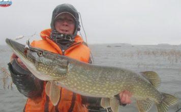 Отчет о рыбалке: 18 ноября 2017, Финский залив