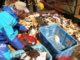 Наука рекомендует возобновить промысел краба-подписал в орла и в Западной подзоне в 2018 году