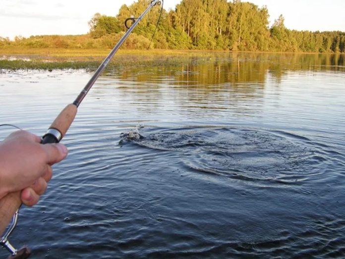 Особенности выбора водоема и методов ловли в преднерестовый период