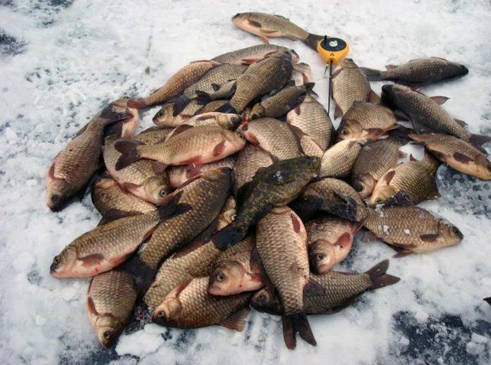 Где искать рыбу в марте