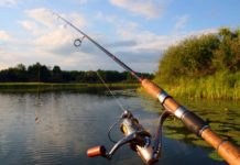 Выбор спиннинга для малой реки