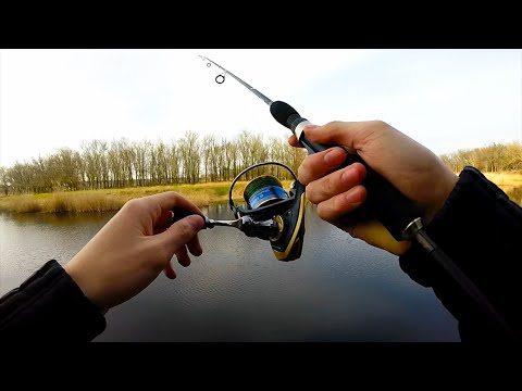 кобона рыбалка летом