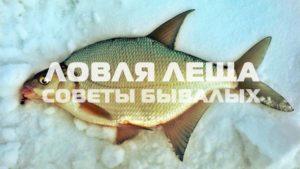 бесплатная рыбалка можайск