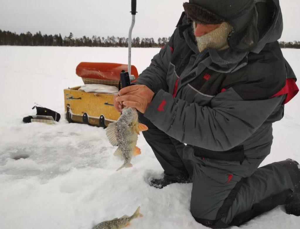 Отчёты о рыбалке на твёрдой воде 2019-2020