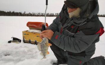 Отчет о рыбалке: 03 января 2018 — 06 января 2018, Соргоотские озера