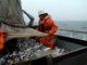 В Охотском море набирает обороты угрозу в путин