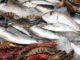 Перу: экспорт морепродуктов в 2017 году выросла на 31,5 %