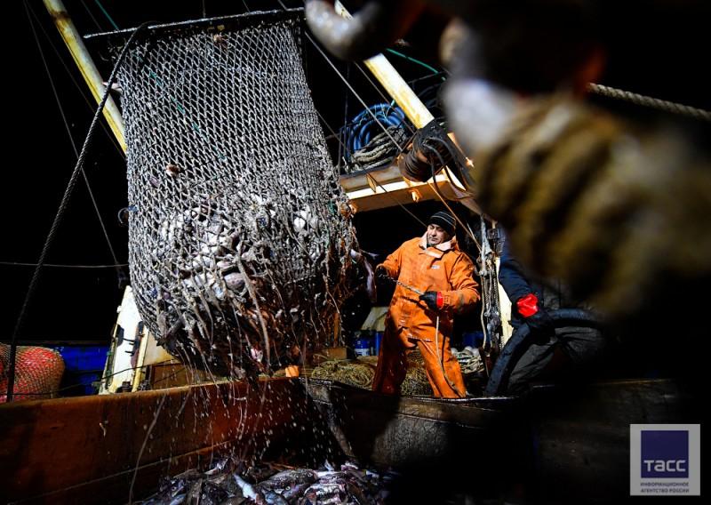 Перегрузка может скрывать незаконный рыбный промысел