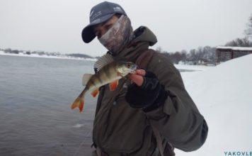 Отчет о рыбалке: 17 февраля 2018, Москва — река (нижнее течение)