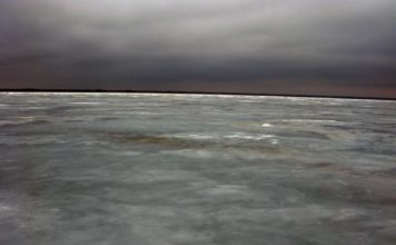 Отчет о рыбалке: 16 марта 2018, Капрповское водохранилище