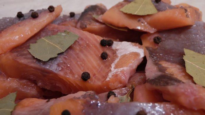 Горбуша – отличная рыба. Но в магазине часто продают некачественный товар. Вы можете засолить рыбу дома, и блюдо будет более полезным. Попробуйте один из перечисленных ниже рецептов.